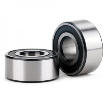NF206 ISO Cylindrical roller bearing